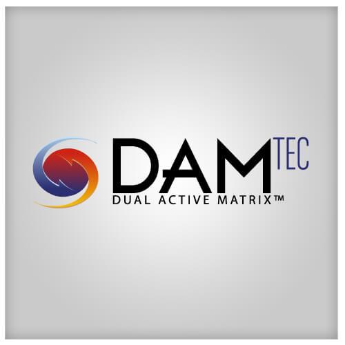 Logo type- Damtech